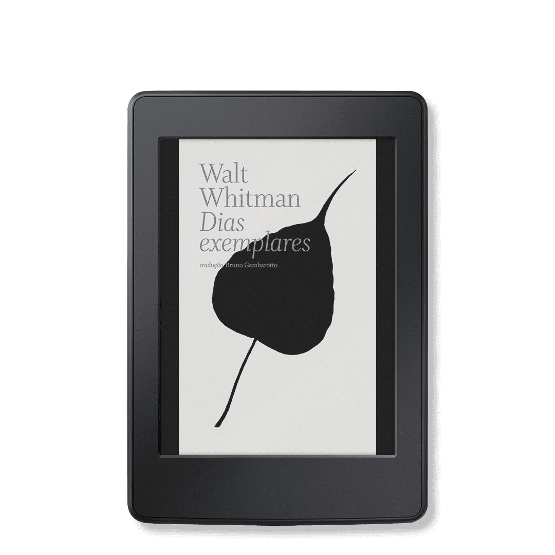 Dias exemplares [e-book]